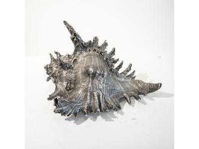 Buccellati - Silver plated shell - circa 1950